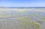 Backyard View towards Beaufort River