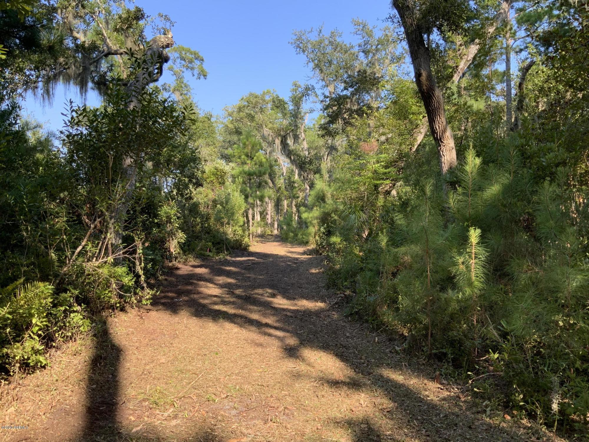 Photo of 165 Dr Martin Luther King Jr Drive, St. Helena Island, SC 29920