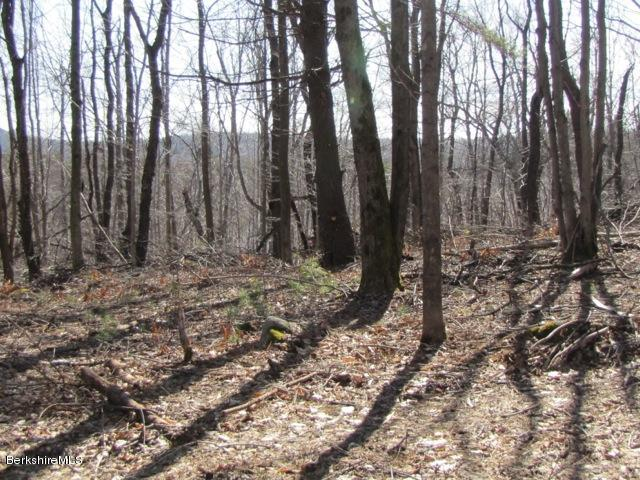 COUNTY, Becket, Massachusetts 01223, ,Land,For Sale,COUNTY,215932