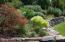 Mature Perennial Gardens