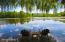 44 Lake Dr, Stockbridge, MA 01262
