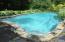 free form gunite pool