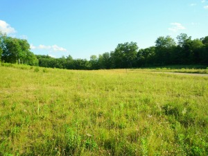 Lot 1-3 SWEET FARM Williamstown MA 01267