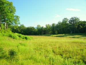Lot 6 Sweet Farm, Williamstown, MA 01267