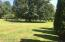 Mature trees and expansive lawn