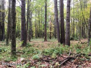 Lot #2 Konkapot Cross Rd New Marlborough MA 01259