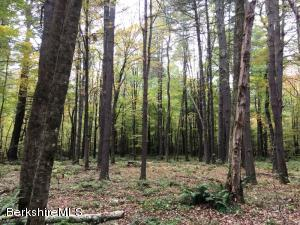 Lot #3 Konkapot Cross Rd New Marlborough MA 01259