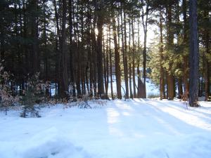 Trail Becket MA 01223