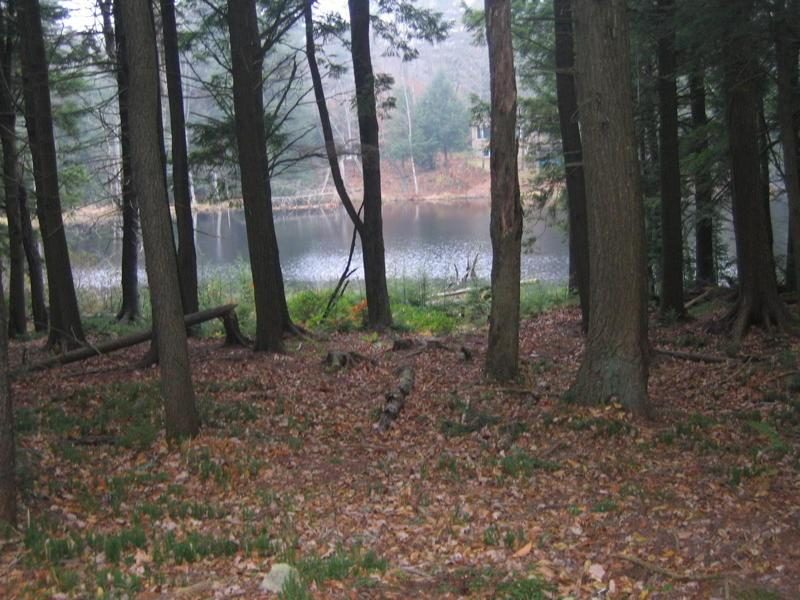 Trail, Becket, Massachusetts 01223, ,Land,For Sale,Trail,222226