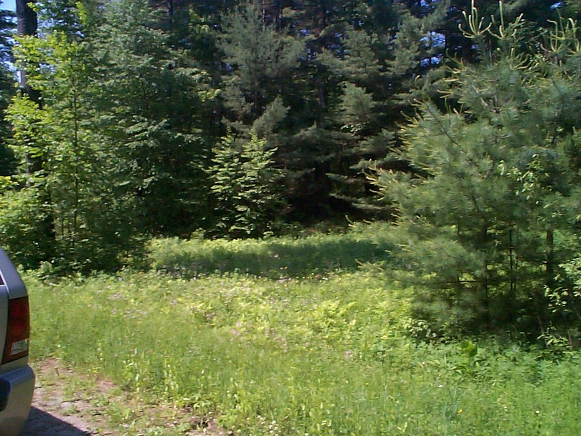 0 Aberdeen, New Marlborough, Massachusetts 01230, ,Land,For Sale,Aberdeen,222622