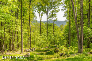 8 CAMPION FARMS, Stockbridge, MA 01262