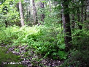 Lot #223 Calvin Rd, Hinsdale, MA 01235
