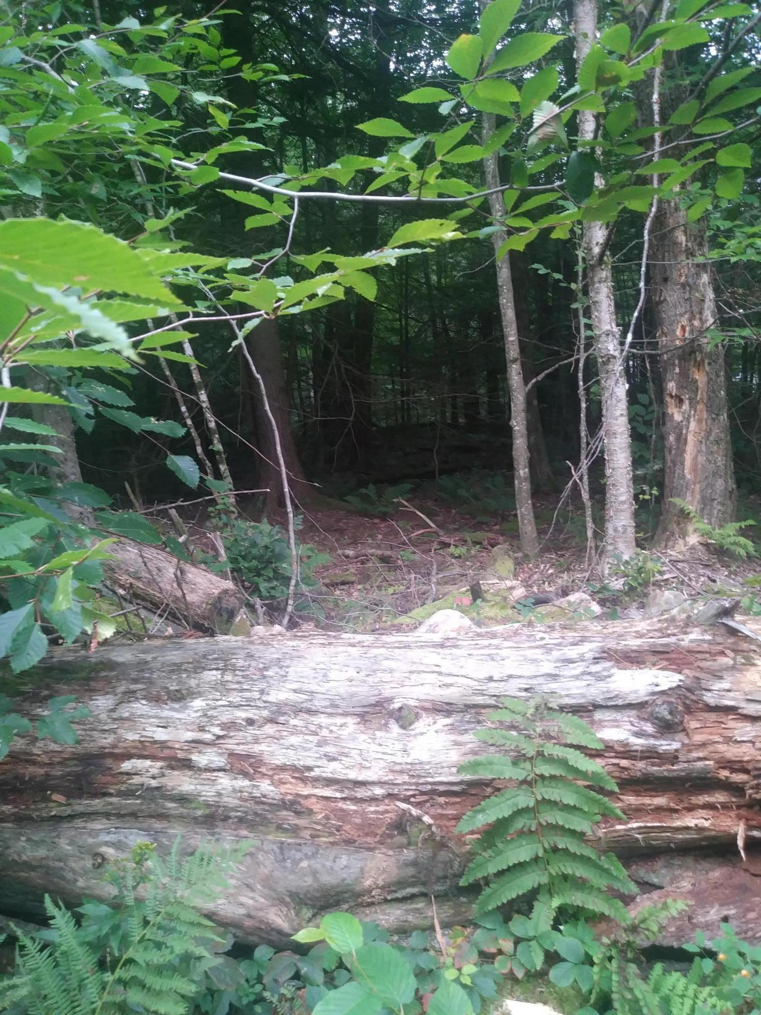 00 Jacobs Hollow Rd Becket MA 01223