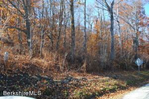 Lot#22 MOHAWK Trail, Florida, MA 01247