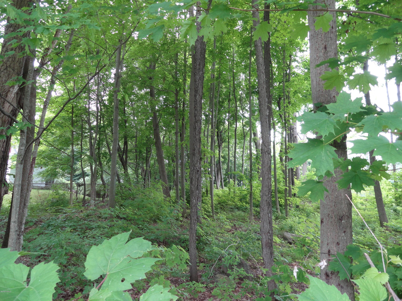 22 Hubbard, Lenox, Massachusetts 01240, ,Land,For Sale,Hubbard,224811