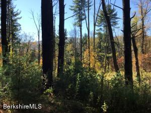 Lot 2A Hillsdale Rd, Egremont, MA 01258