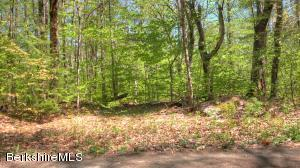 Norwalk Acres Rd, Monterey, MA 01245
