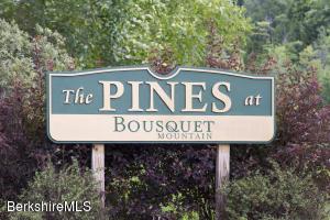 61 Alpine, Pittsfield, MA 01201
