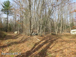 Lot 2 Jepson/Lesure, Stamford, VT 05352