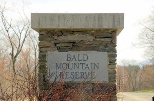 Bald Mountain Rd Austerlitz NY 12017