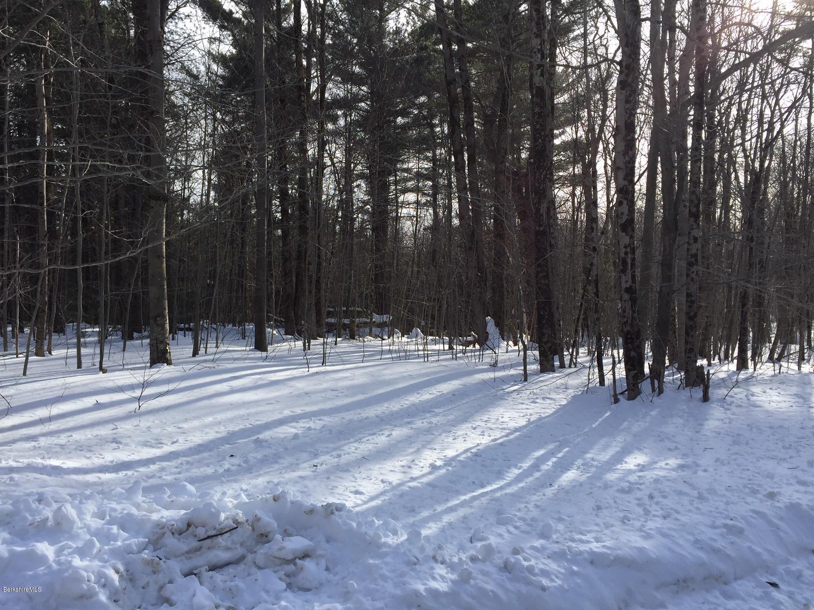 0 Dimmock, Otis, Massachusetts 01253, ,Land,For Sale,Dimmock,226189
