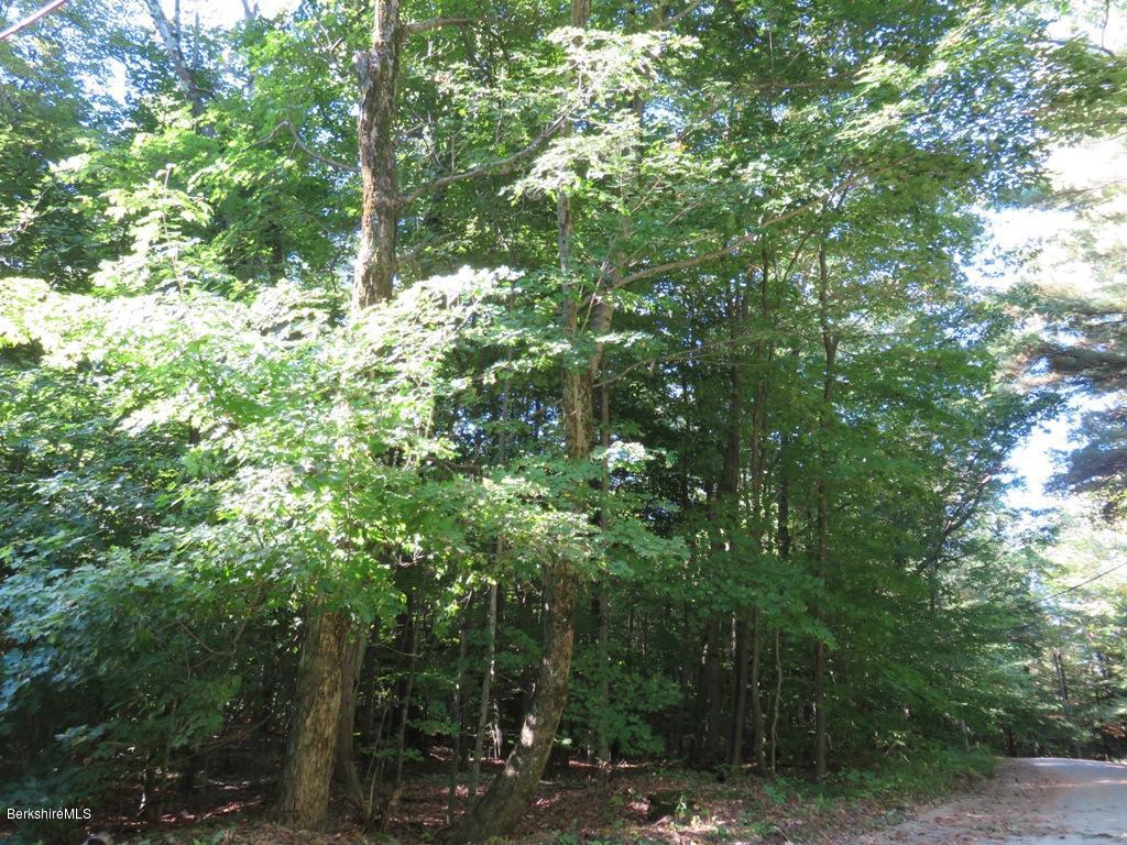 Pine Dale Cir Becket MA 01223