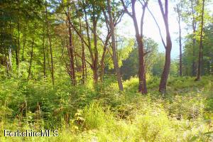 Lot 1-4 SWEET FARM Williamstown MA 01267