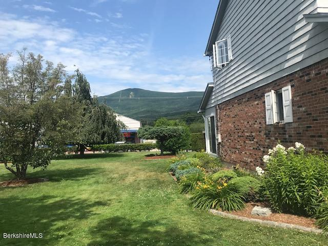 view of Mt Greylock from yard