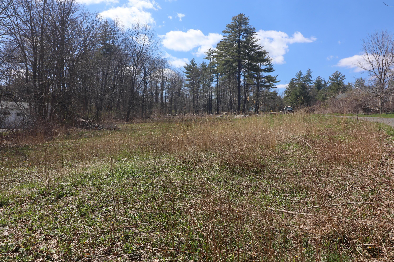 105 Plain, Great Barrington, Massachusetts 01230, ,Land,For Sale,Plain,230366