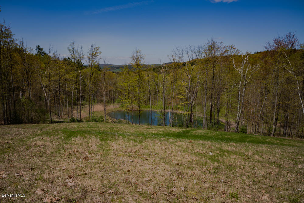 County Rte 5, Canaan, New York 12029, ,Land,For Sale,County Rte 5,230496