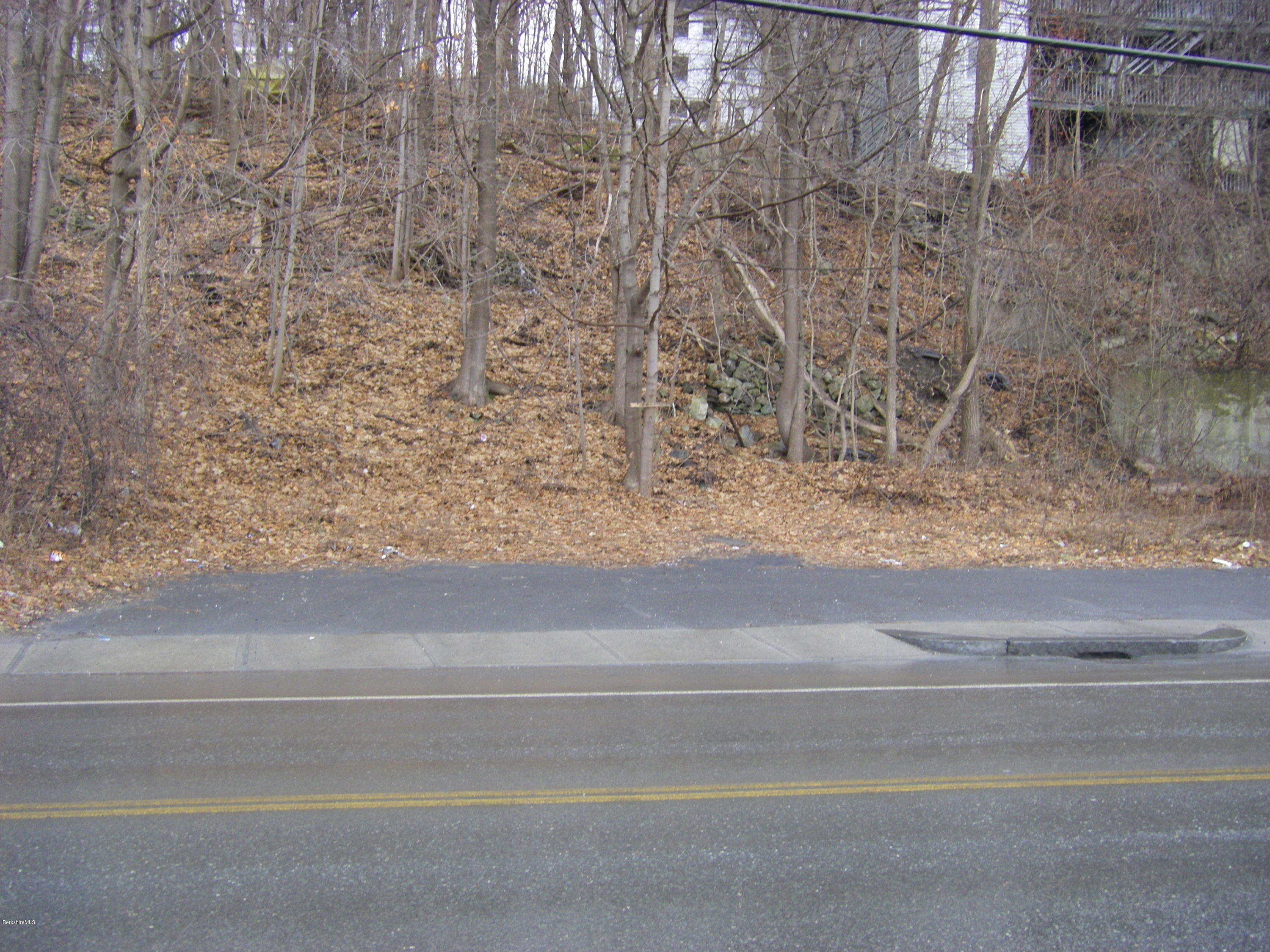 279 state, North Adams, Massachusetts 01247, ,Land,For Sale,state,230854