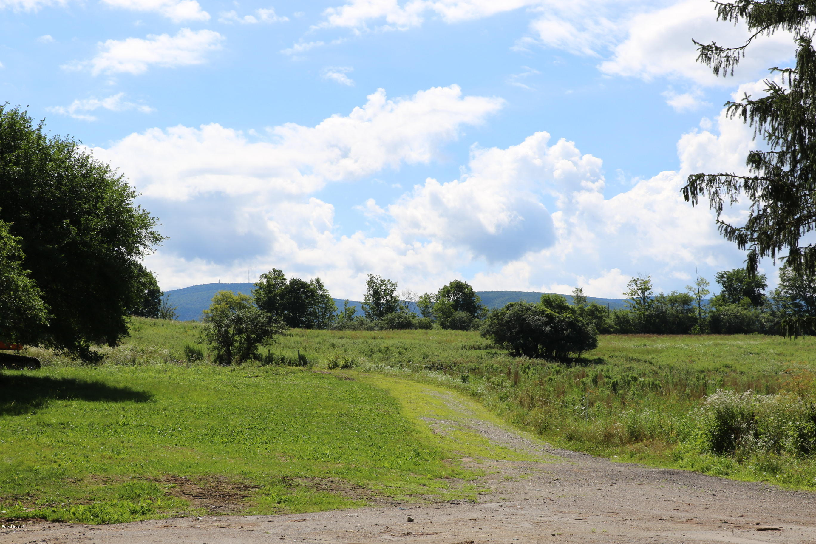 1382 Cold Spring, Williamstown, Massachusetts 01267, ,Land,For Sale,Cold Spring,231703