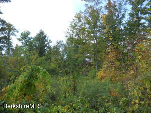 LOT 14 Jenks Rd Cheshire MA 01225