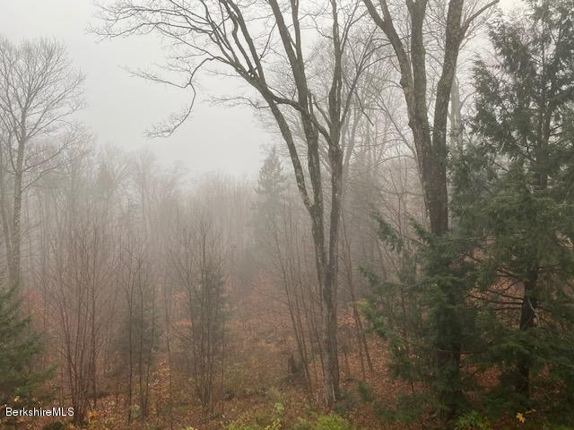 View from Deck on Misty Day