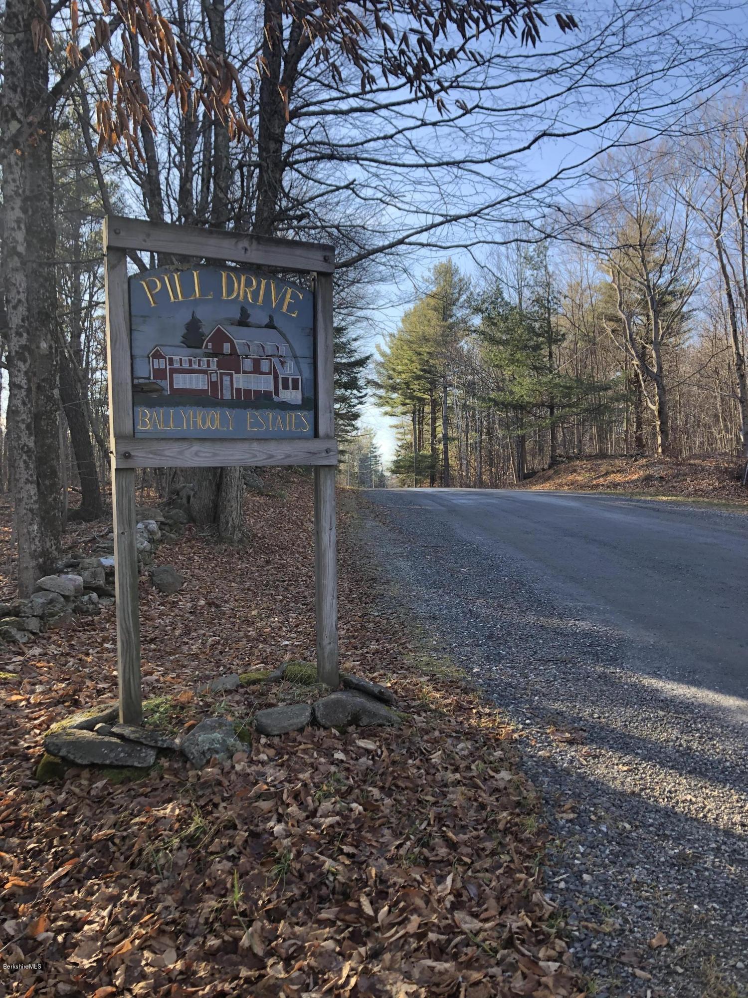 Lot 10 Pill, Becket, Massachusetts 01223, ,Land,For Sale,Pill,233015
