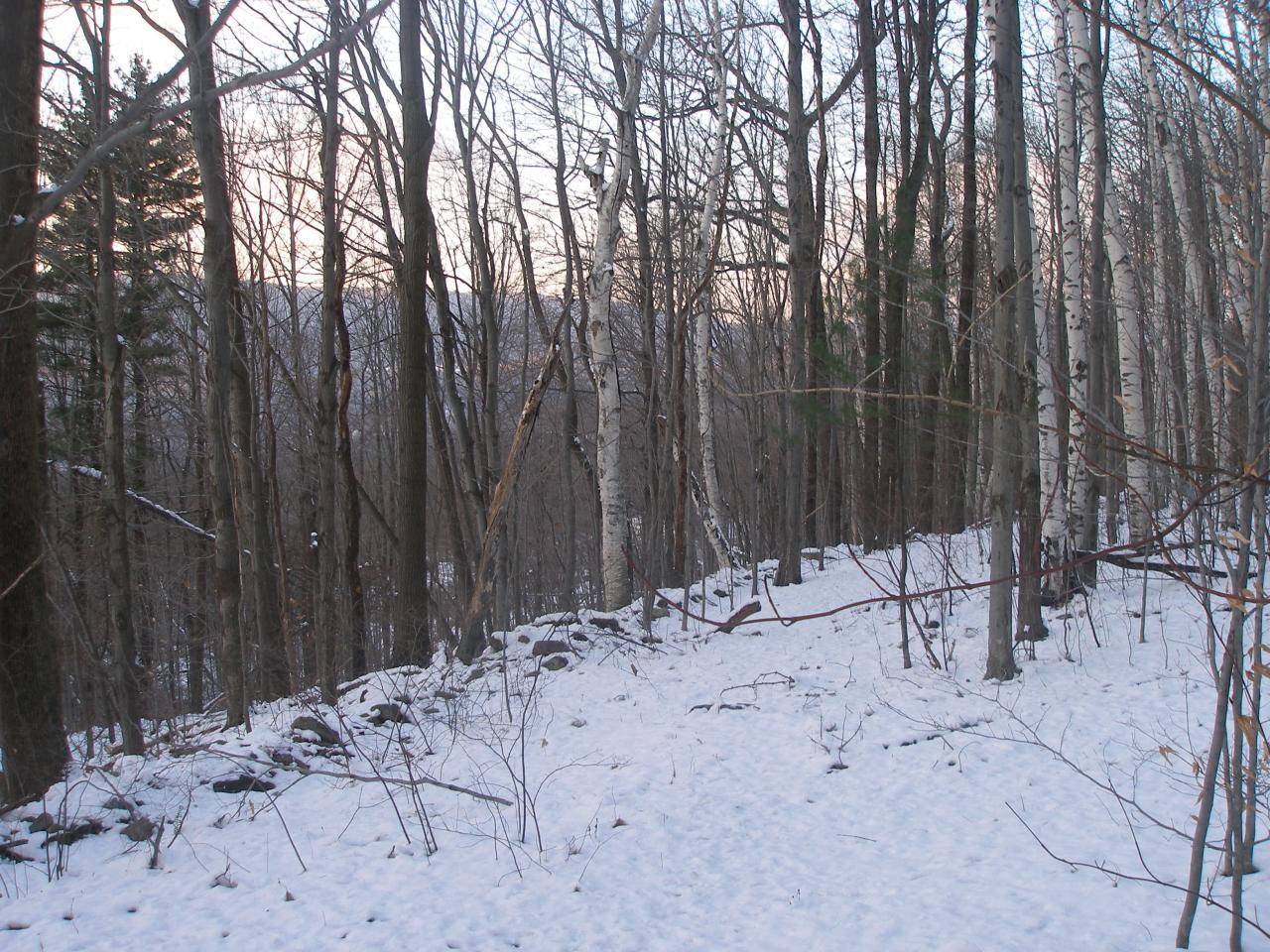 0 Oak, North Adams, Massachusetts 01247, ,Land,For Sale,Oak,233023