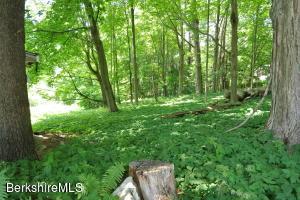 48 Old Stockbridge Lenox MA 01240