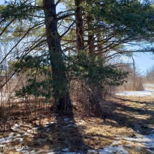 1454 Cold Spring Williamstown MA 01267
