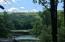 Views from Yard