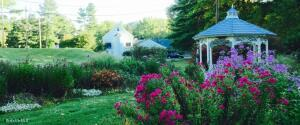 910 Cold Spring Williamstown MA 01267