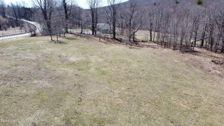 Drone Shot Tree Line