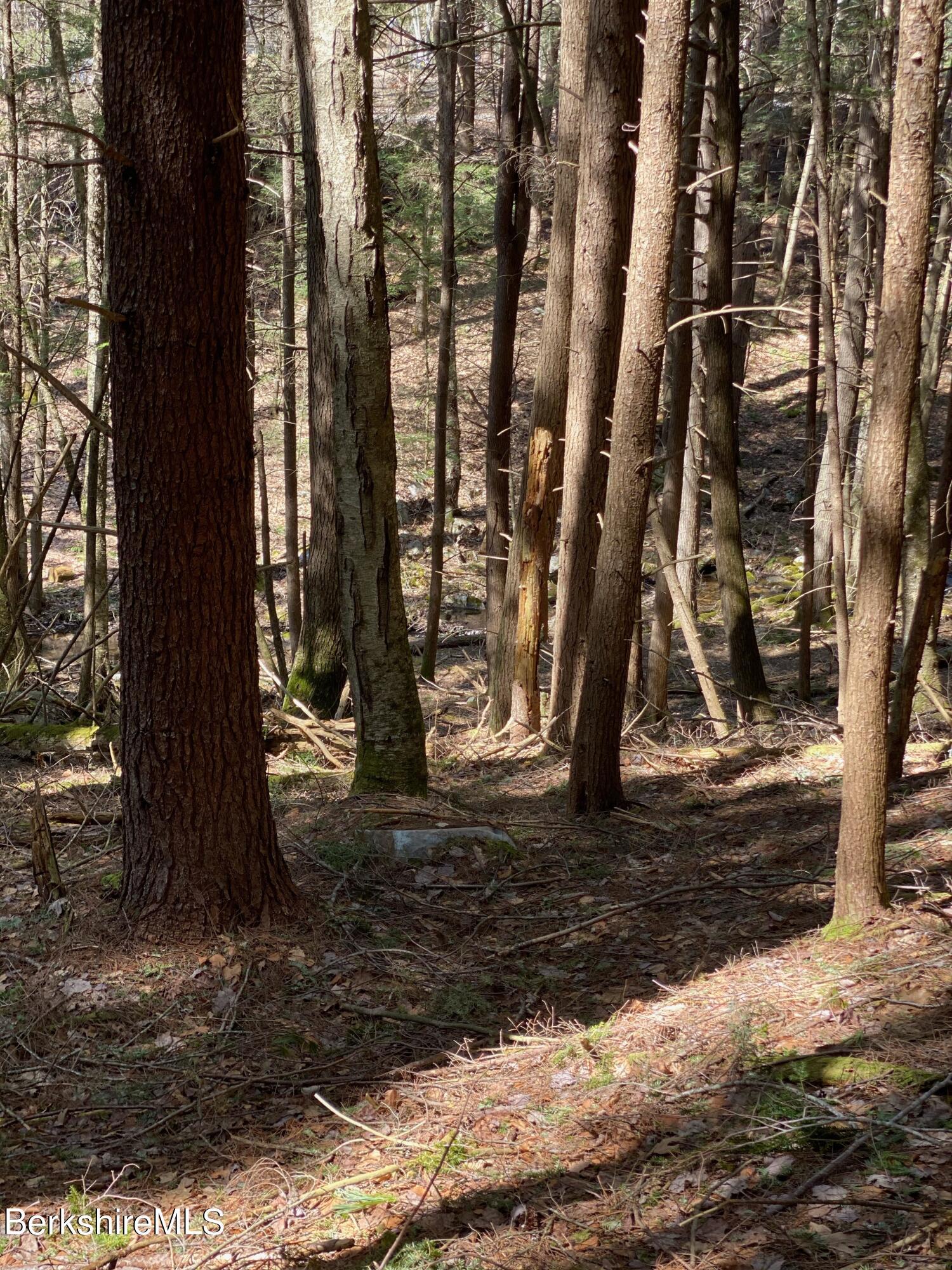 0 Pixley, Monterey, Massachusetts 01245, ,Land,For Sale,Pixley,234089