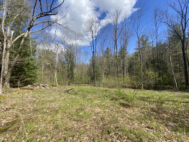 0 Main, Tyringham, Massachusetts 01264, ,Land,For Sale,Main,234222