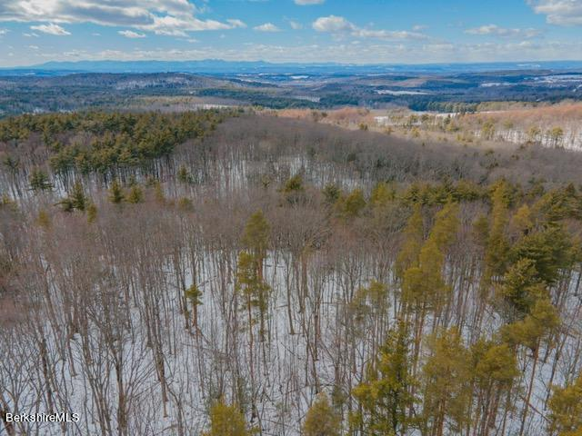 268 Ashley Hill, Old Chatham, New York 12136, ,Land,For Sale,Ashley Hill,229701