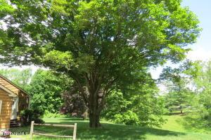 95 Orchard Adams MA 01220