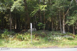 South Washington State Washington MA 01223