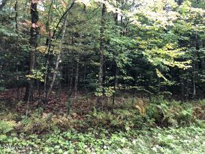 Trail Becket MA 01223