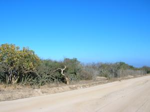 Lot 46 Bahia Terranova, Lote Smith, East Cape,