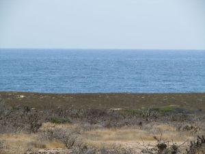 Beachfront Estate Property, El Posito, Pacific,