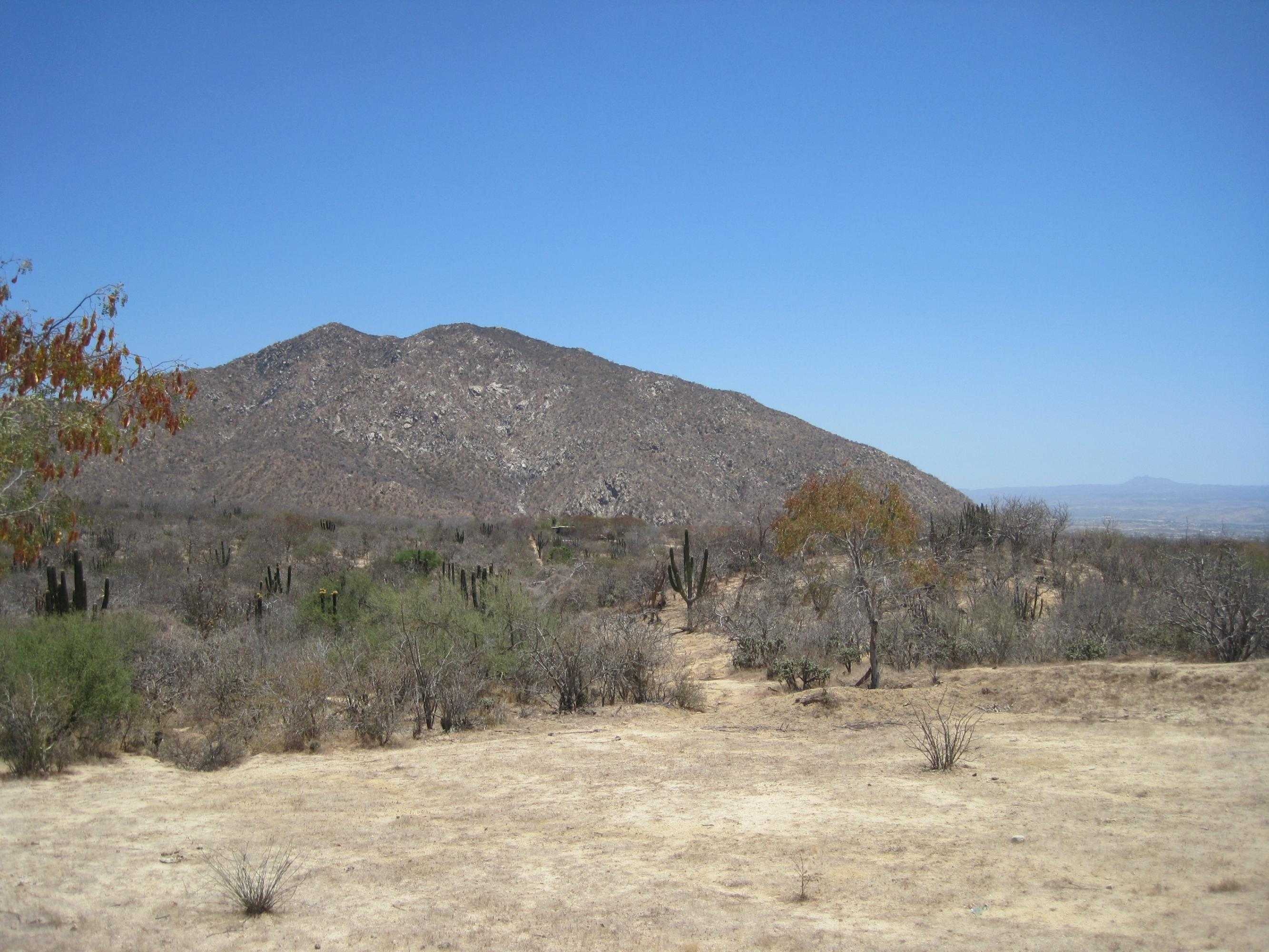 San Jose del Cabo, ,Land,For Sale,Camino a San Felipe,13-927